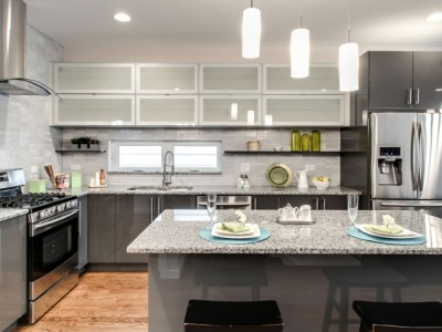 """West Bucktown"" new construction has modern edge"